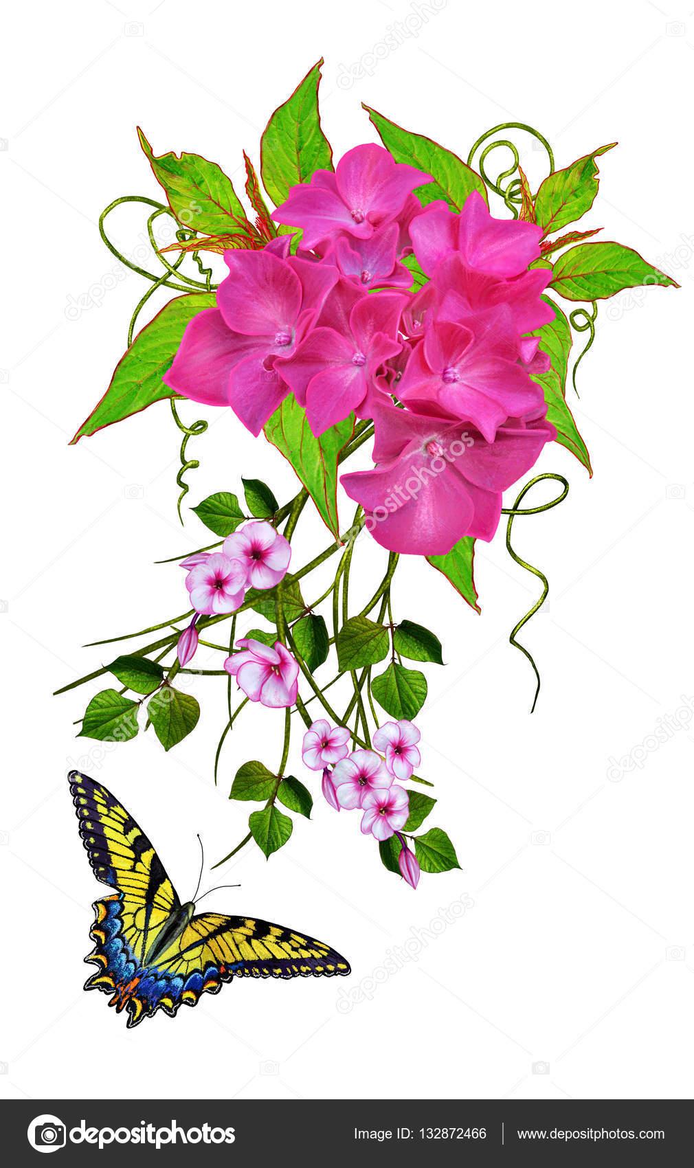 Composición de la flor. Rama de hojas verdes, pequeñas flores ...