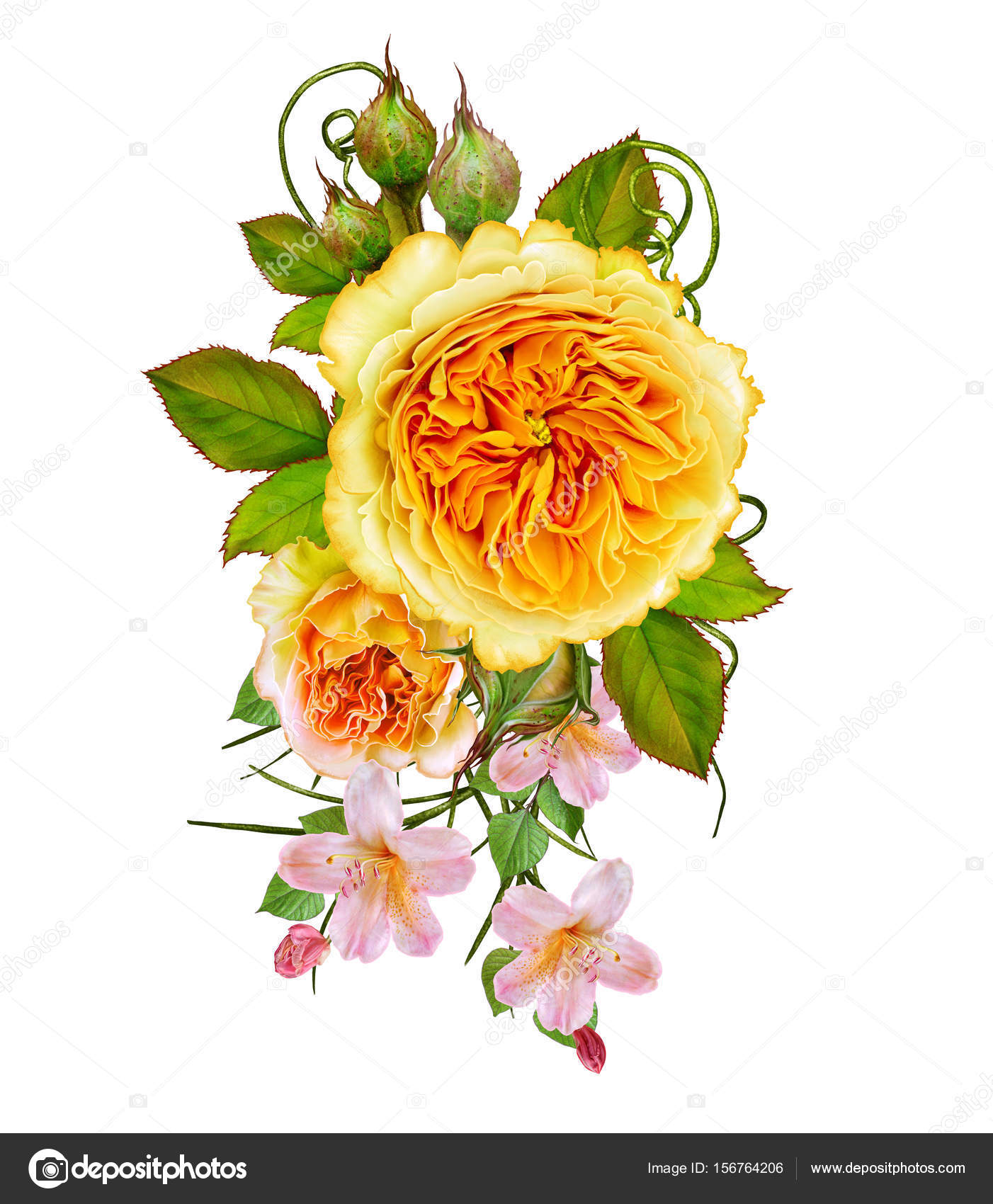Flower Arrangement Of Delicate Orange And Yellow Roses Isolated On