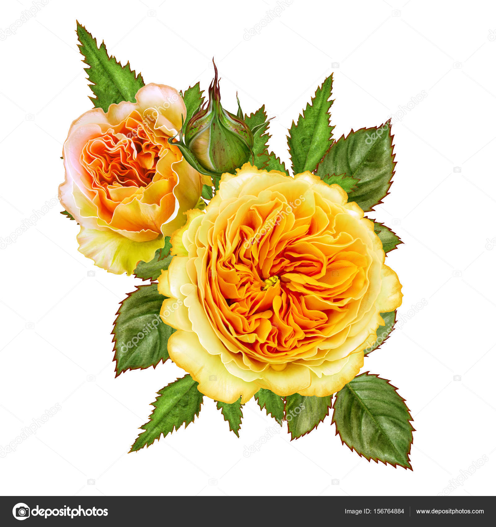 Flower Arrangement Of Delicate Orange And Yellow Roses Stock