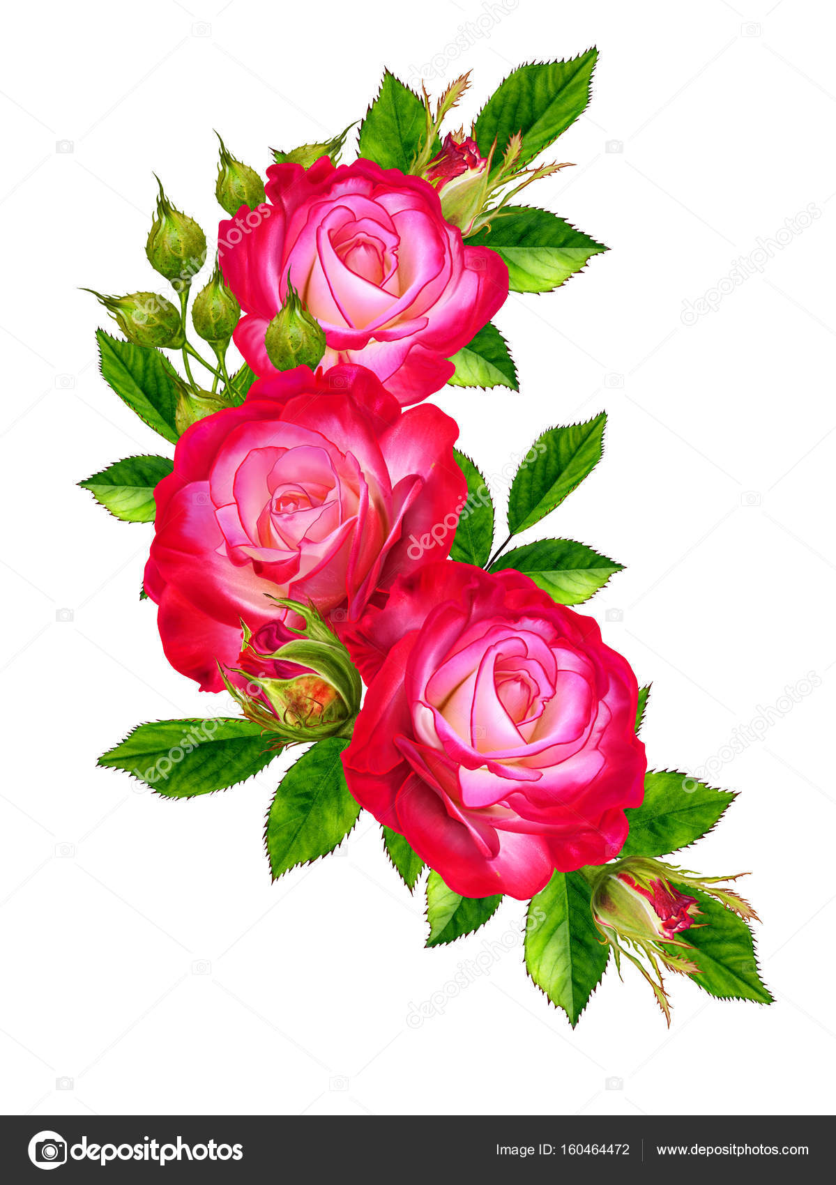 Flower composition. A bouquet of bright beautiful red roses, green ...