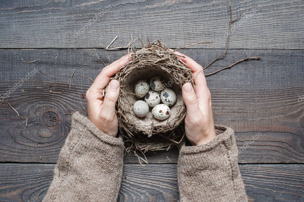 Woman's hands holding the nest