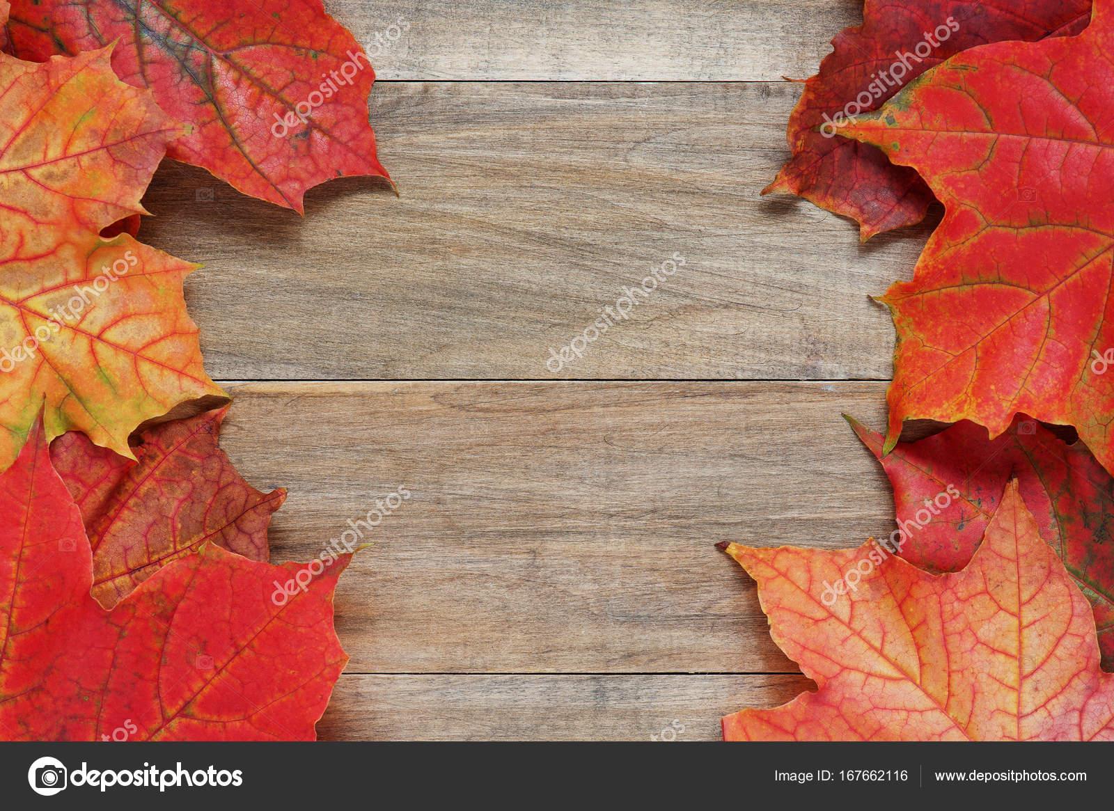 Fondo madera brillante otoño hojas de arce — Foto de stock ...
