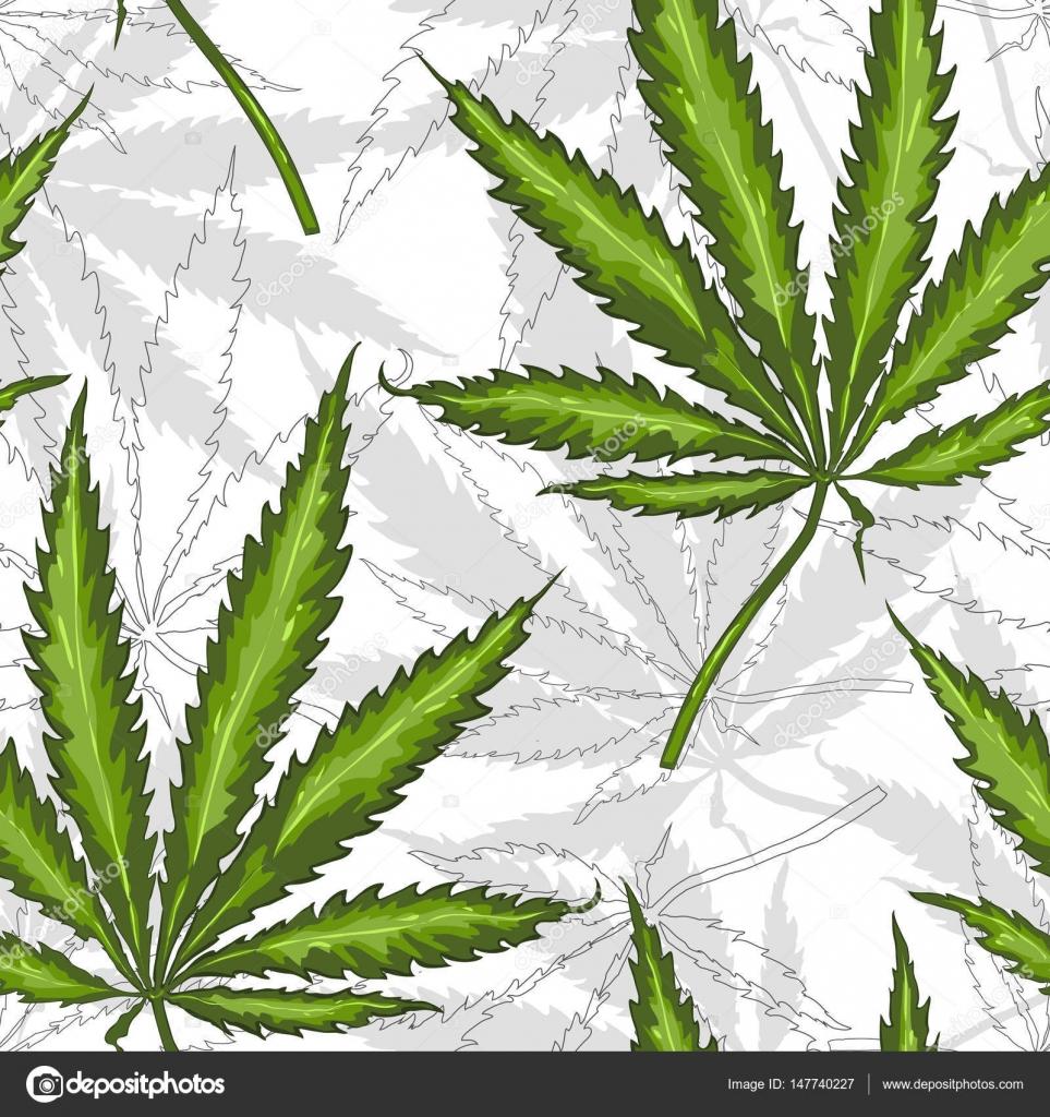 Конапля марихуана гашиш план Лирика  Магазин Киселёвск
