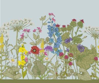 Vector seamless floral border.