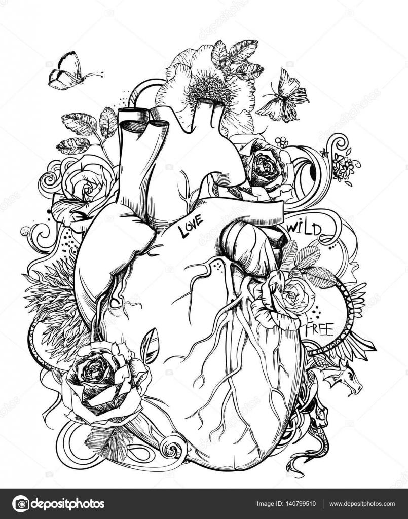 corazón - imagen de la anatomía con flores — Vector de stock ...