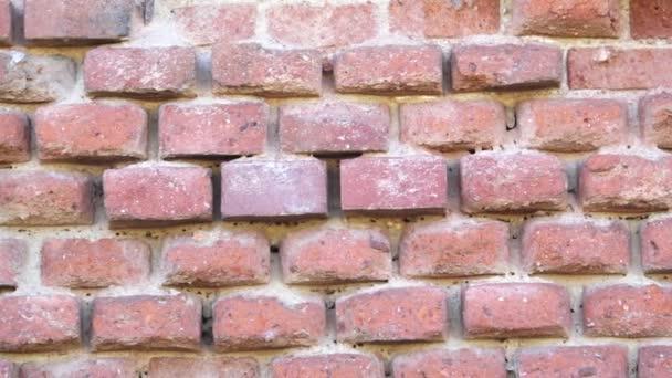 Zničené cihlová zeď. Stará červená cihlová zeď