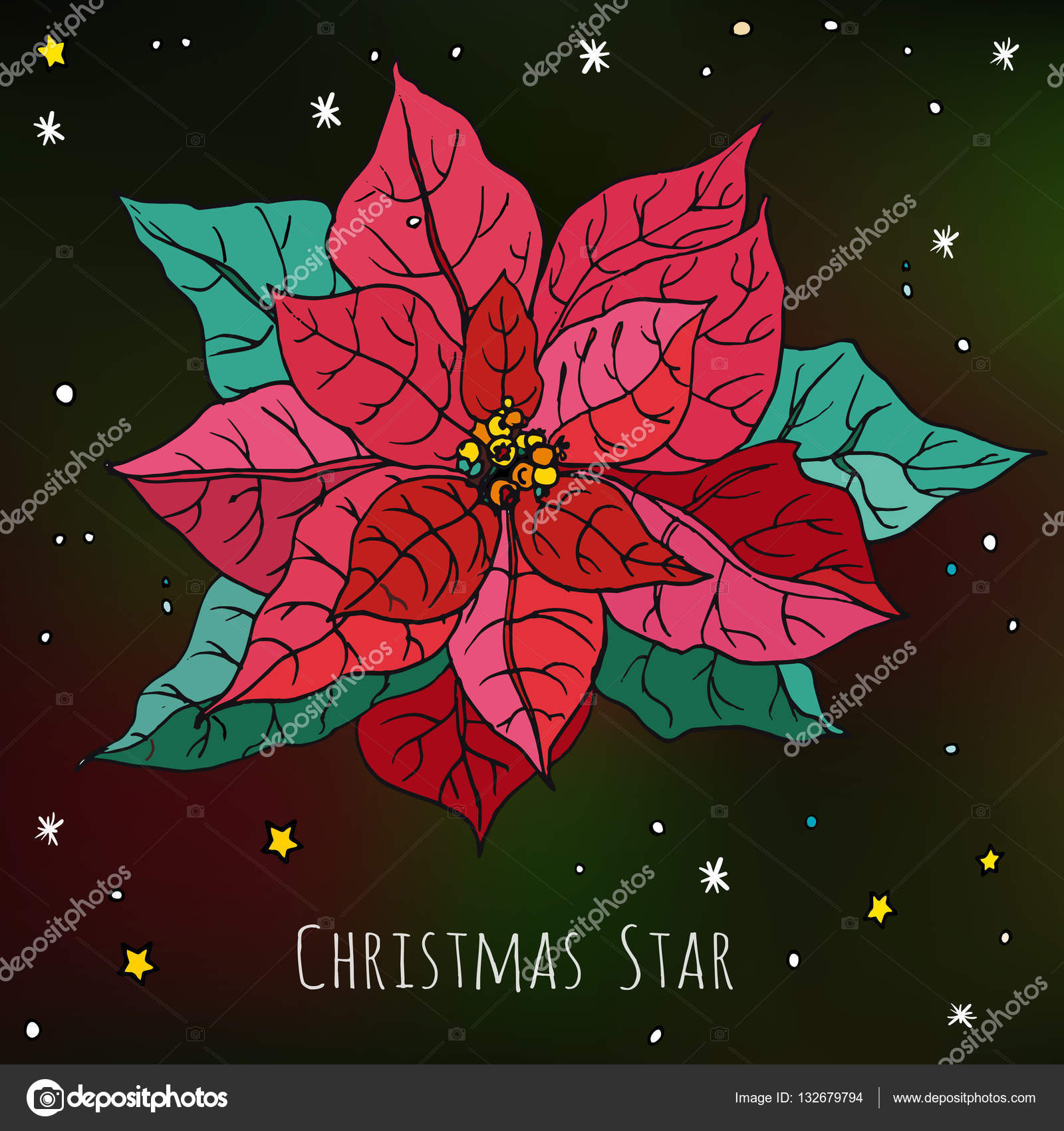 Estrella de Navidad. Flor roja con hojas de color verde — Vector de ...