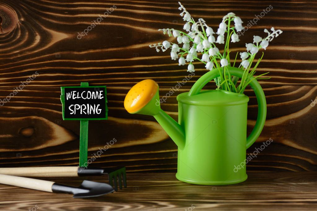 Garden watering can and tools for gardening