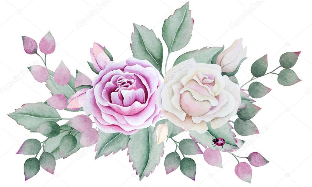 Watercolor a bouquet of roses