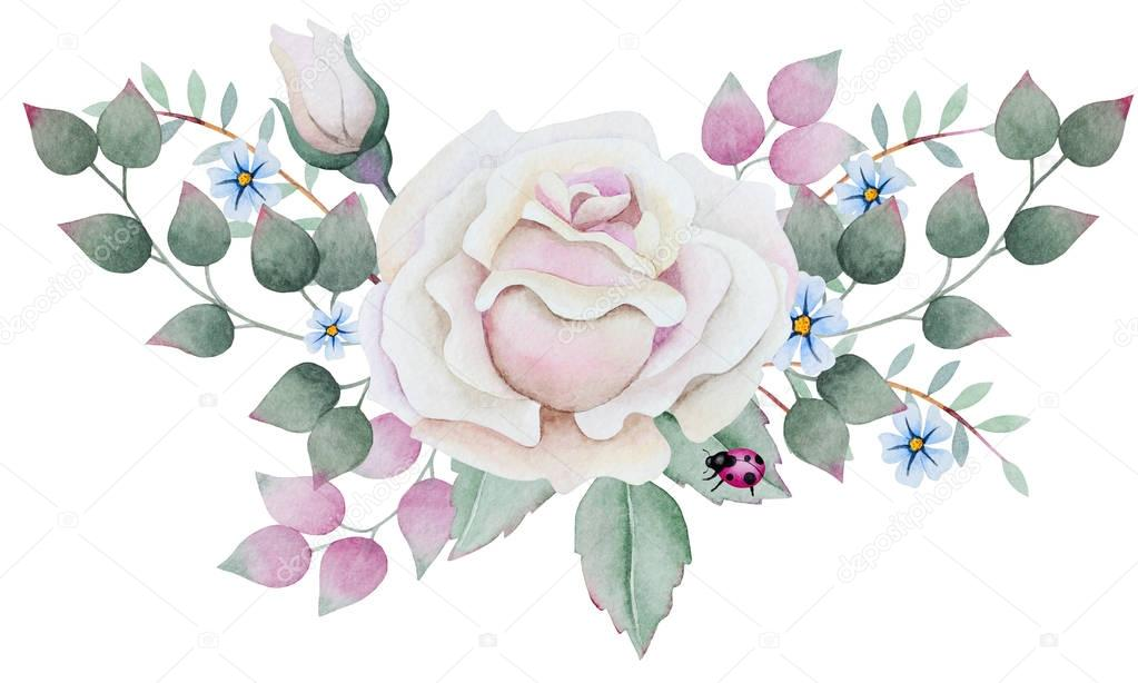 Watercolor bouquet with white rose