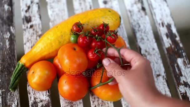 Uvádění čerstvých zralých rajčat cherry nad jiné vegetariáni v zahradě
