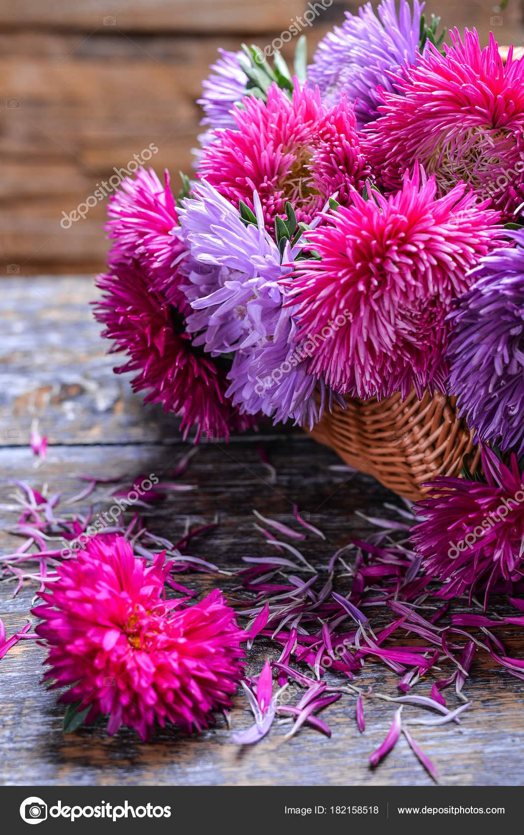 Aster flowers bouquet basket purple red pink white wooden background aster flowers bouquet at the basket purple red pink white on a wooden background selective focus photo by nataliiagl izmirmasajfo