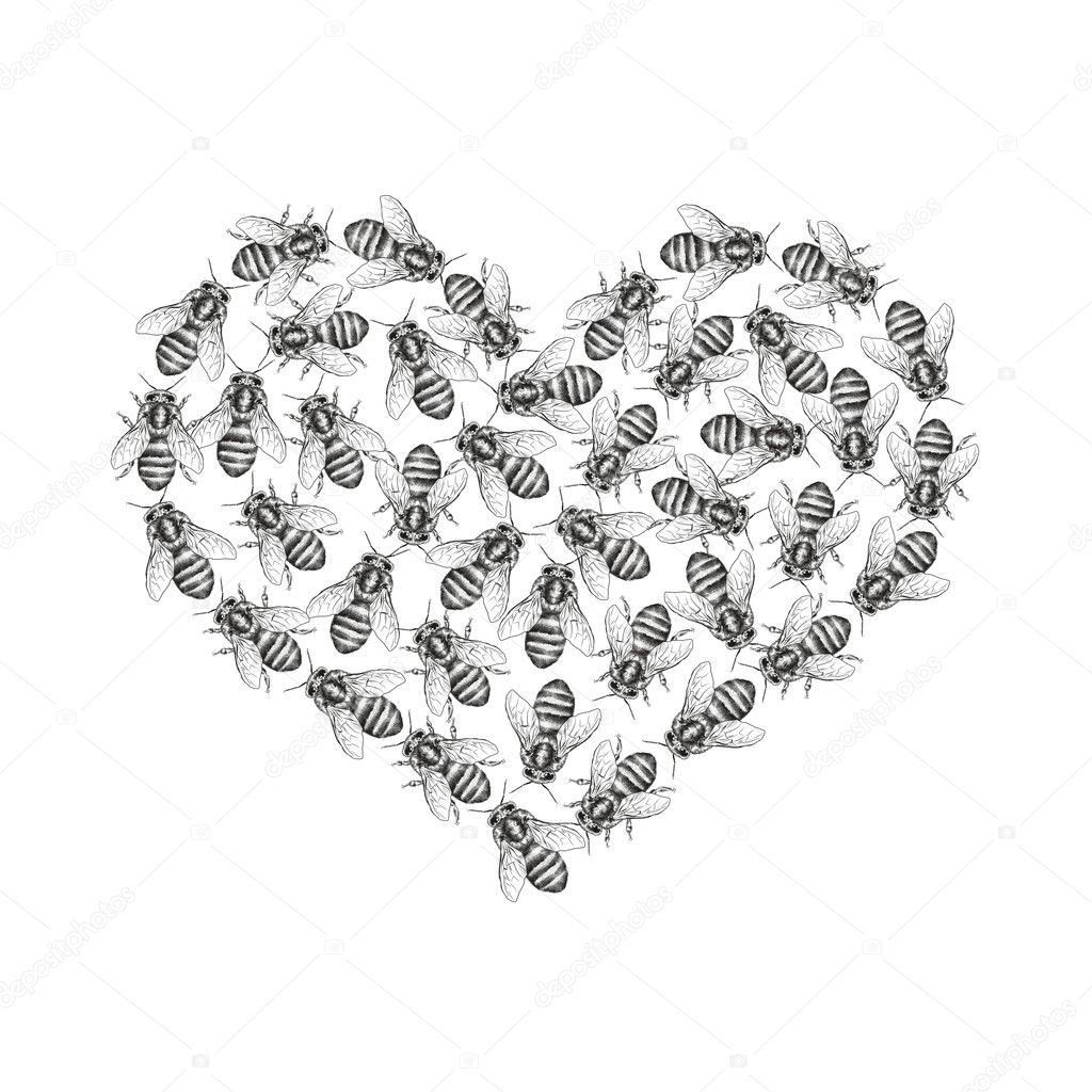 Bees are isolated on a white background. Seamless texture pattern. Realistic graphic illustration. Background with insects for design. Form of a heart