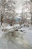 Paesaggio invernale con un fiume di montagna ricoperta di ghiaccio allinizio dellinverno in una giornata nuvolosa