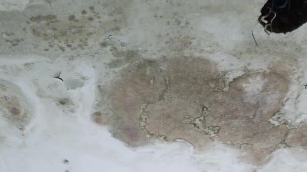 infiltrace a úniky vody do bílé střechy domu