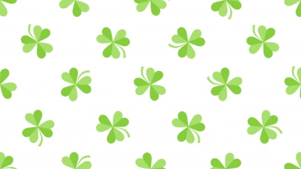 Animace Saint Patricks Day holiday background with motion green shamrocks