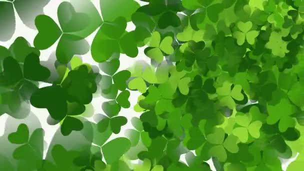 Motion green shamrocks, Saint Patrick Day animace pozadí