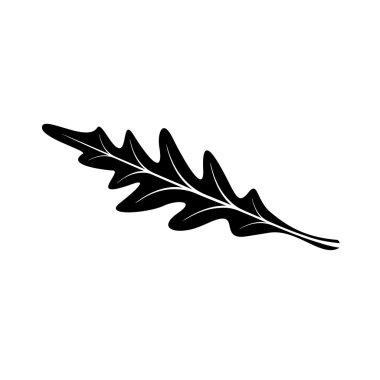 Arugula leaf icon