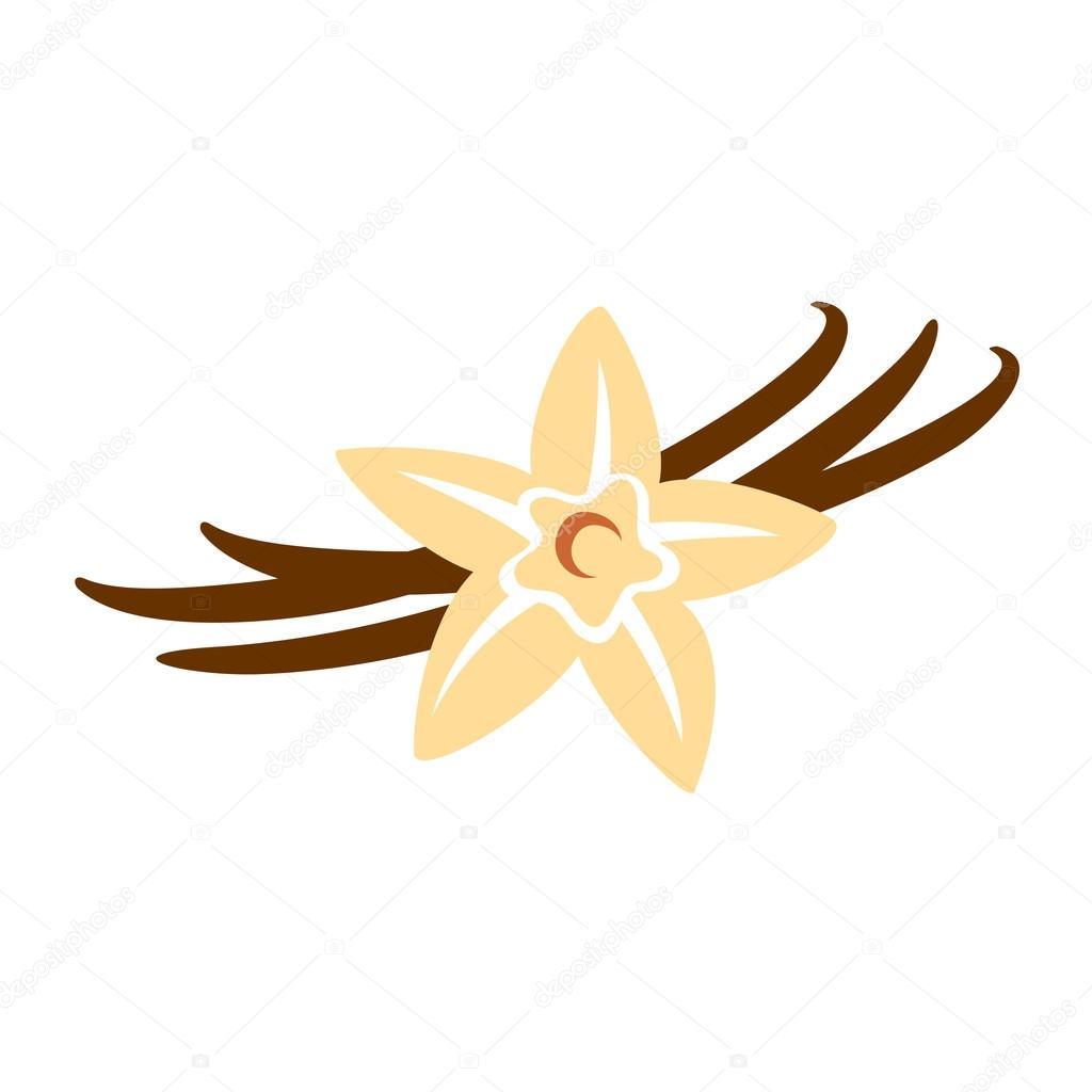 depositphotos_125752006-stock-illustration-design-of-vanilla-flower.jpg