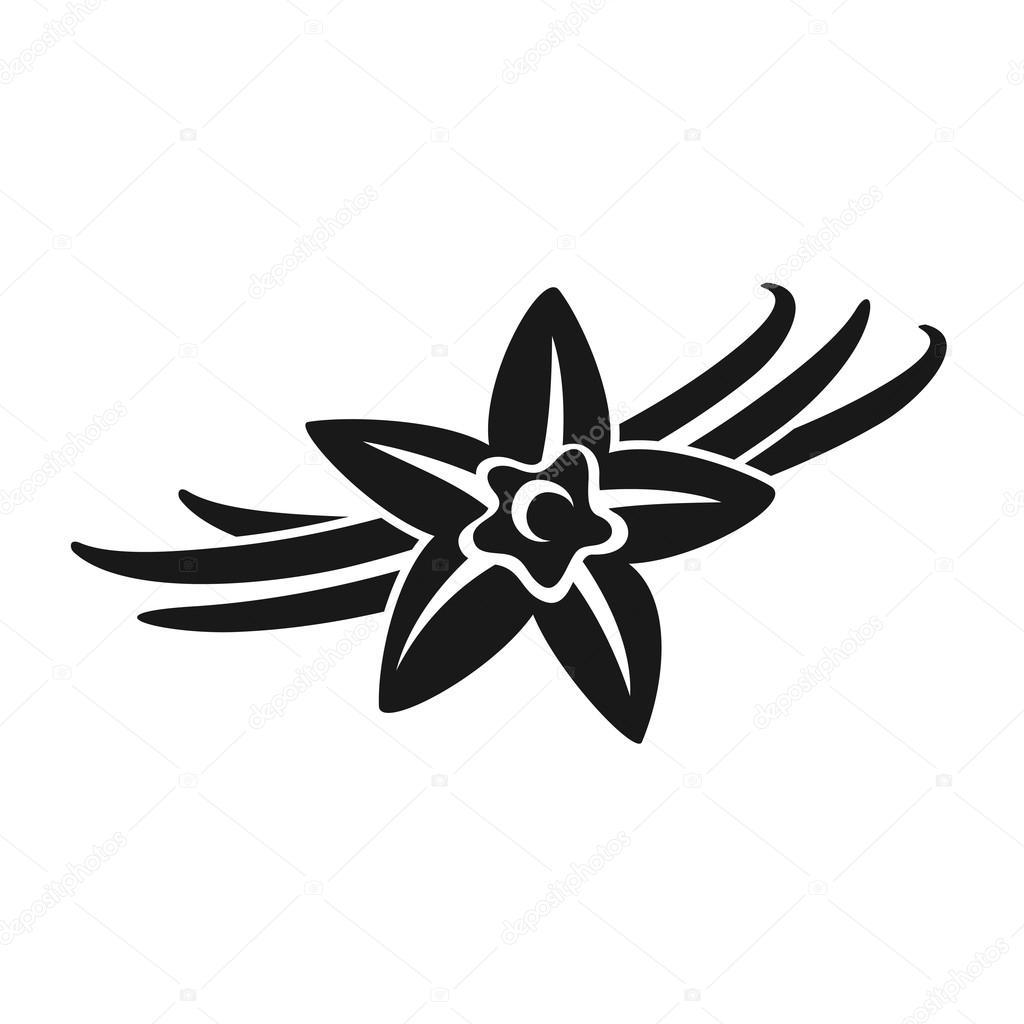 Fleur de vanille dessin - Vanille dessin ...