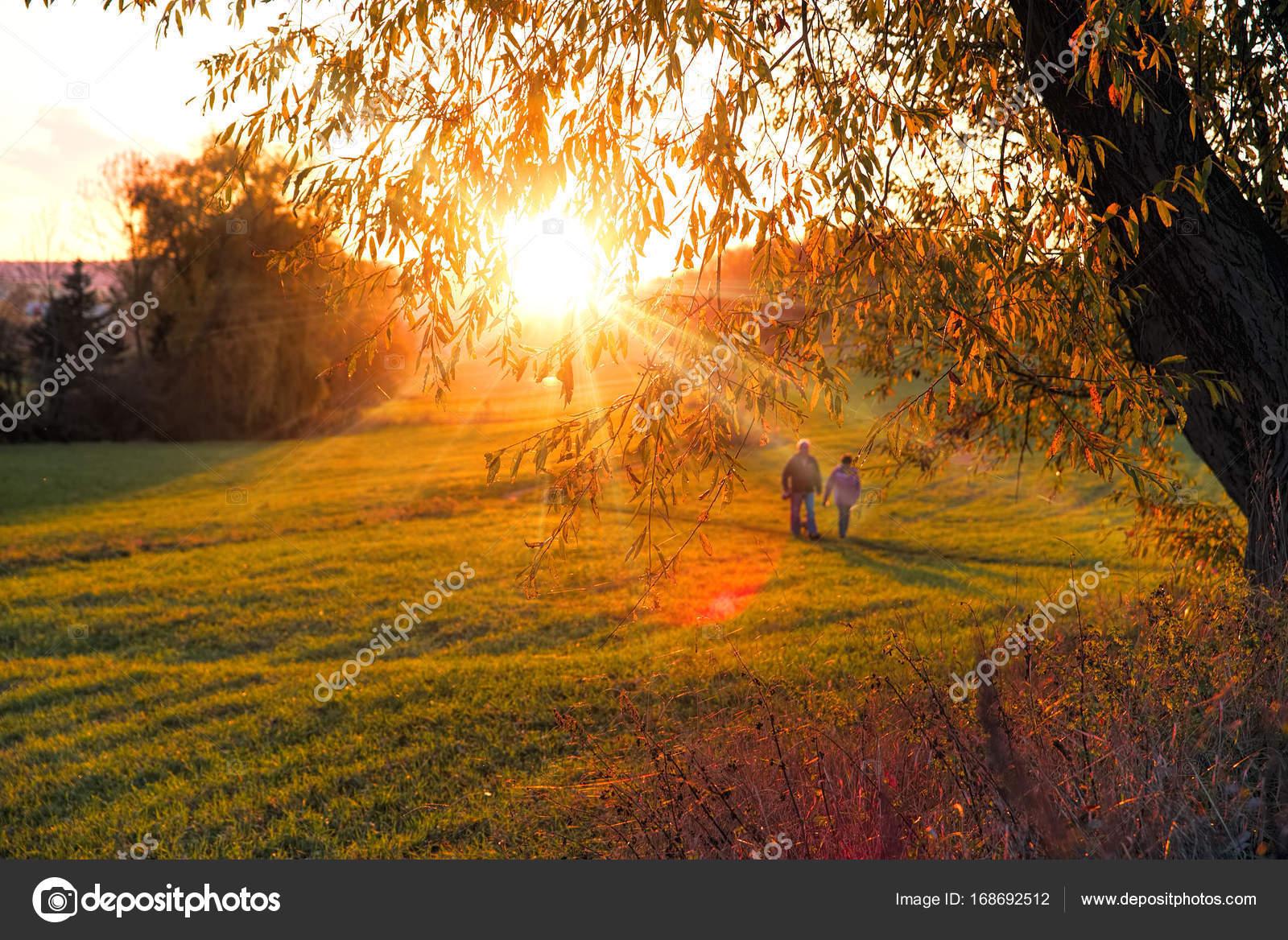 Słoneczny Jesienny Krajobraz Wiersz Jesienny Pożółkłych