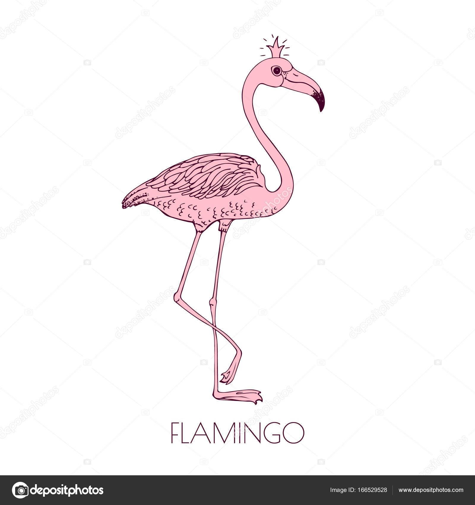 Disegno Della Mano Fenicottero Maglietta Disegnato Rosa A Y7bgyf6