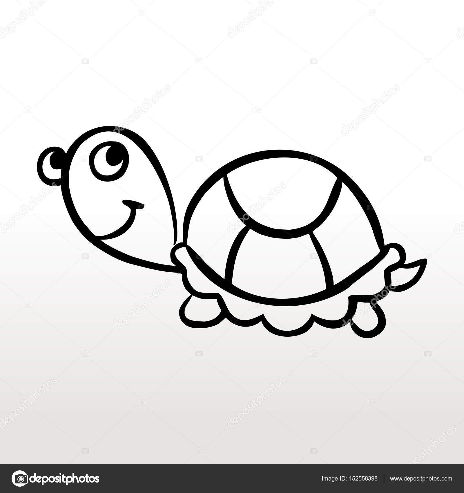Dibujos Blanco Y Negro Infantiles Infantiles De Tortugas Para