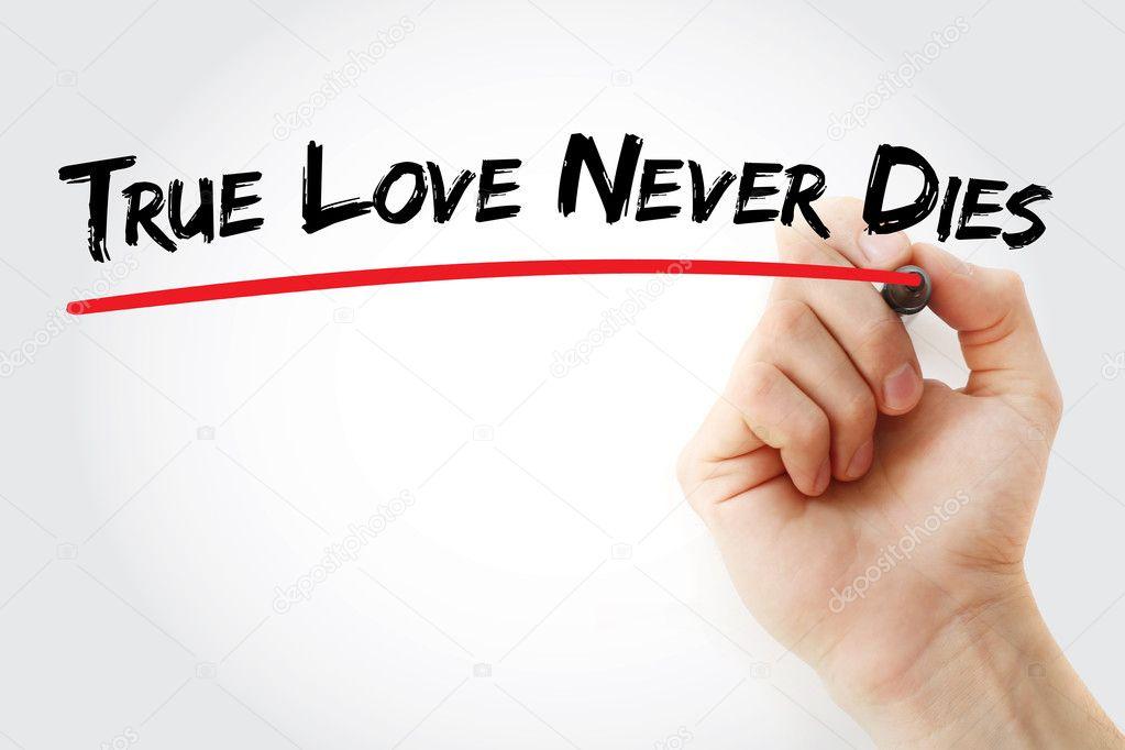 Main Qui écrit True Love Never Dies Avec Le Marqueur Photographie