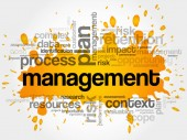 Fotografie MANAGEMENT word cloud collage
