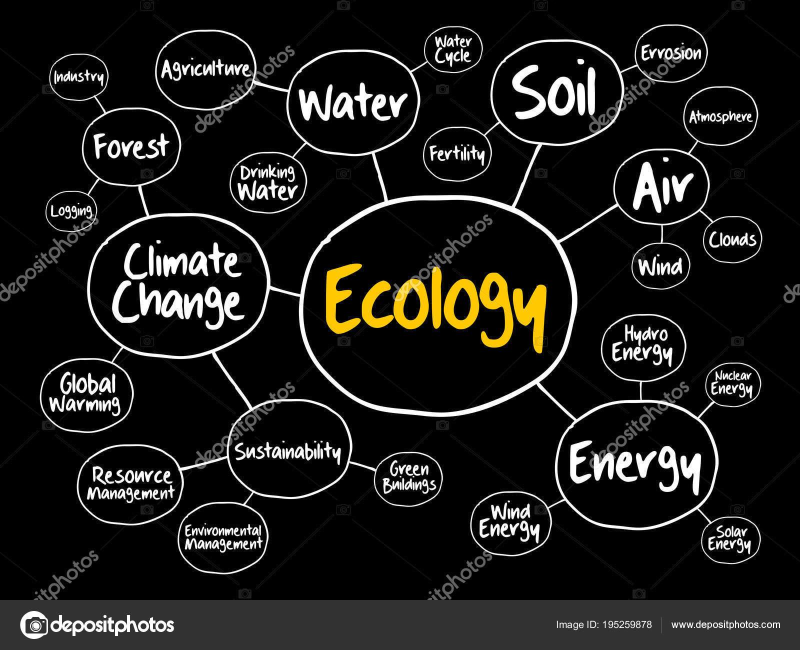 Ecology Mind Map Flowchart Concept Stock Vector C Dizanna 195259878