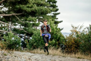 runner skyrunner with nordic hiking running mountain landscape