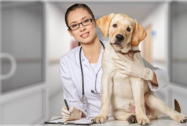 female doctor with canine patient