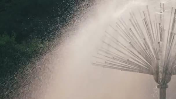 Fontana in forma di opere di camomilla