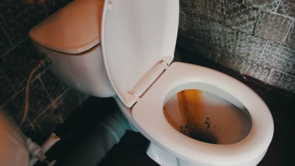 Dirty Toilet Flushes Water
