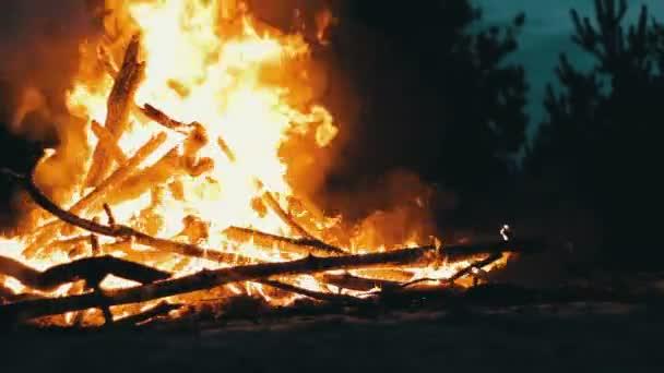 Velké ohně z větve Burn v noci v lese