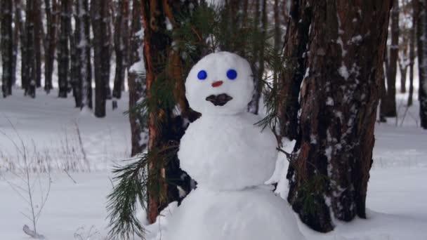 Sněhulák v borovém lese stojící venku