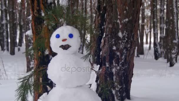 Ember, a fenyves erdő Sculpts hóember