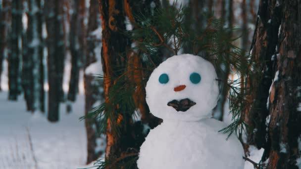 Tvář sněhulák v borovém lese stojící venku