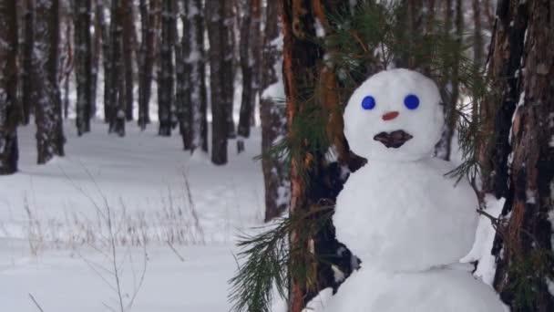 Hóember, egy fenyves erdőben áll a szabadban