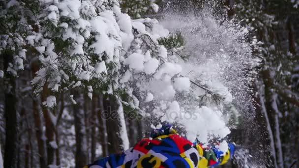 Muž pracuje a vyvolá sněhu se zasněženým v zimním lese. Zpomalený pohyb