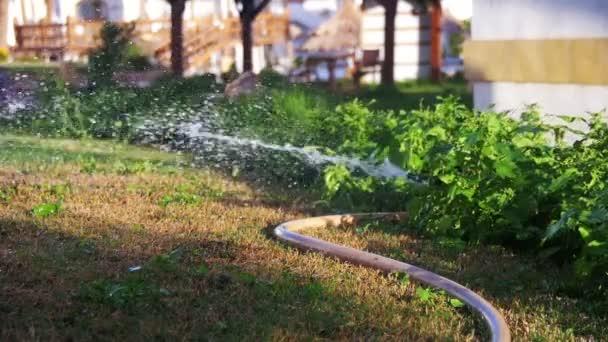 Rasen Bewässerungssystem garten bewässerung sprinkler bewässerung rasen in zeitlupe