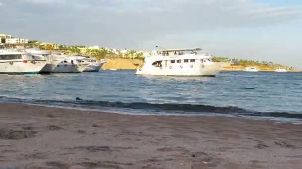 Pleasure Boats Arrive at the Pier on the Beach in Egypt. TimeLapse