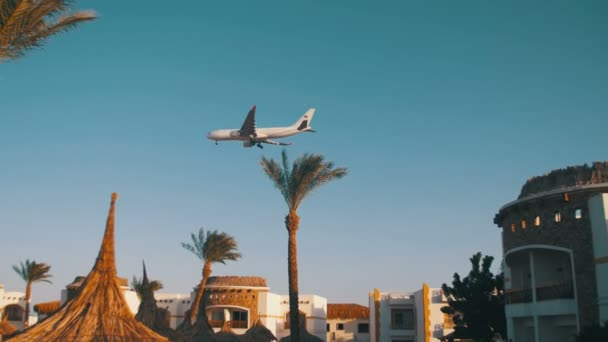 Large Passenger Plane Flying in the Sky over Hotels in Egypt