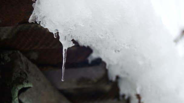 Sníh taje ze střechy a kape na jaře
