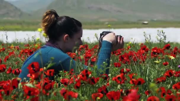 Lány a fényképezés területén a virágzás Pipacsok a hegyekben