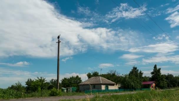 Čáp sedí v hnízdě na sloup a pohybující se mraky na modré obloze. Časová prodleva