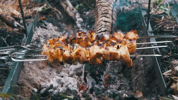 Kebab s kuřecím masem jsou vařené na The Fire na přírodu