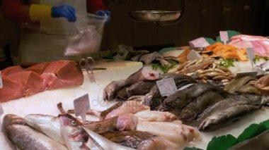 Showcase with Seafood in Ice at La Boqueria Fish Market. Barcelona. Spain.