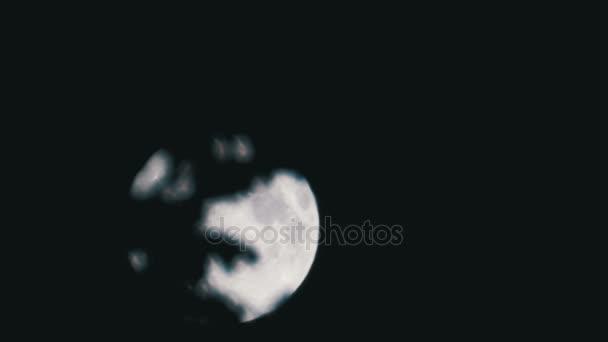 Úplněk se pohybuje na noční obloze přes temné mraky a stromy. Timelapse