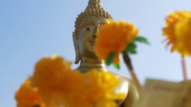 Thajské darování peněz stromy v chrámu velkého zlatého Buddhy, Pattaya. Thajsko.